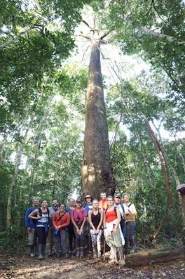 company retreat in the Amazon rainforest