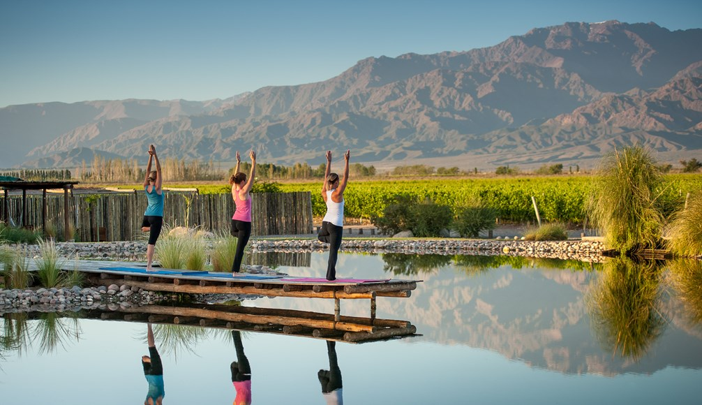 The Vines Resort and Spa Yoga