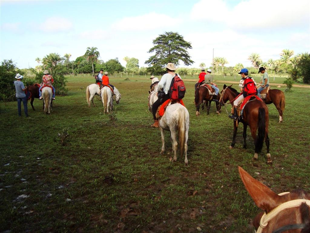 Pousada Do Rio Mutum Horseback Riding