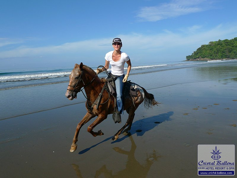 Hotel Cristal Ballena Activities Horseback Riding