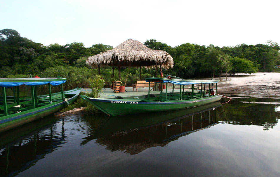 Amazon Ecopark Jungle Lodge - Manaus, Brazil