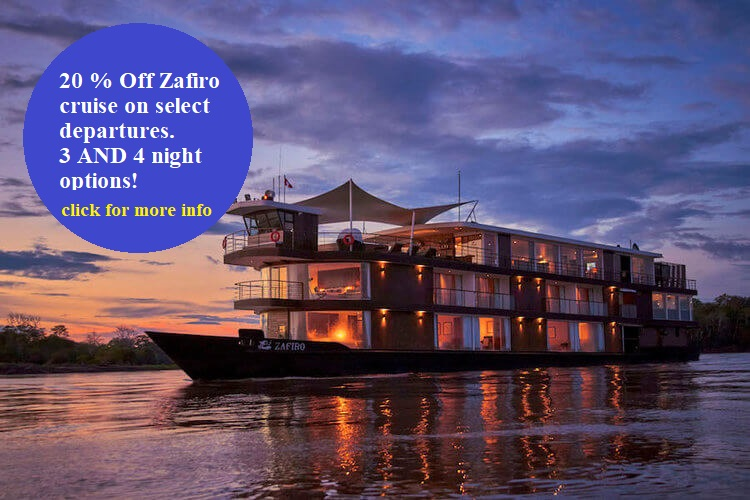 Get a 20 percent discount on the Zafiro Amazon Cruise